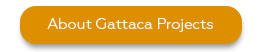 Gattaca projects - outsource engineering and IT